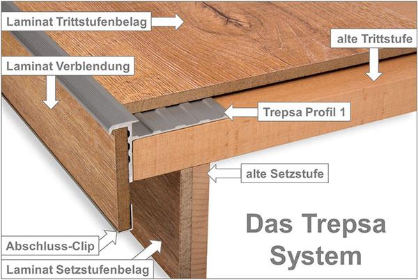 Trepsa System